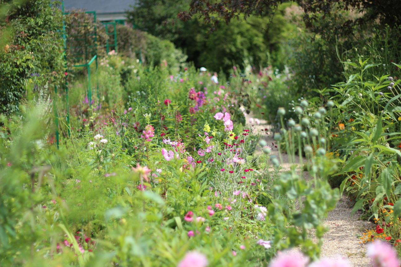 """Monets trädgård, älskar """"röran"""""""